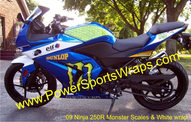 Ninja 100_0862.