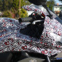 Vinyl wrapping film Paisley skull pattern