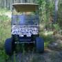 hunting buggy